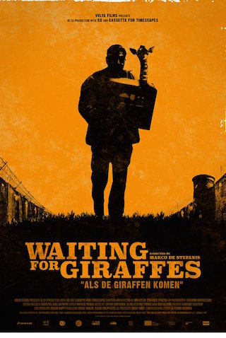 Waiting For Giraffes