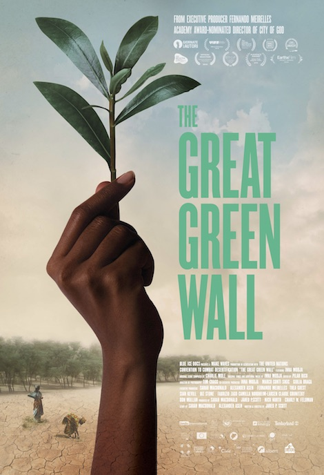The Great Green Wall movie poster