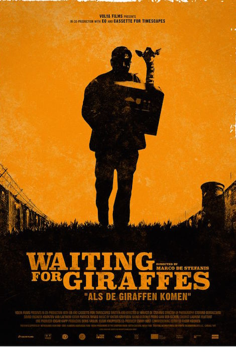 Waiting For Giraffes movie poster